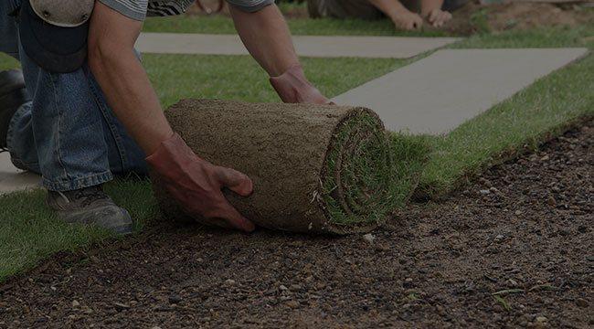 Foley Lawn Maintenance
